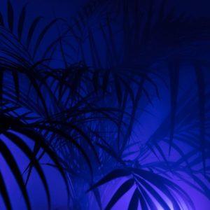 golden_island_moses_legg_beatz_103_00_bpm